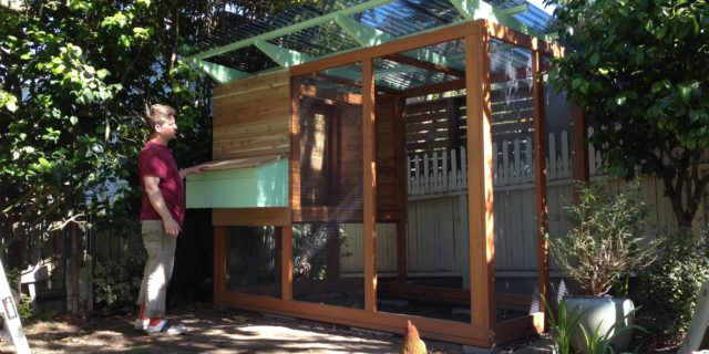Coop Construction Part 6: Nest Box Installation