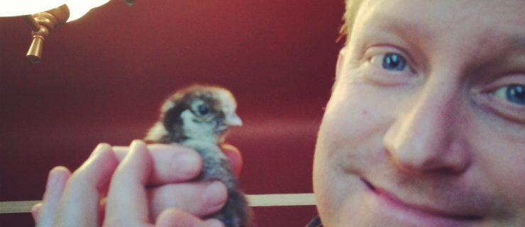 Poultry Papa