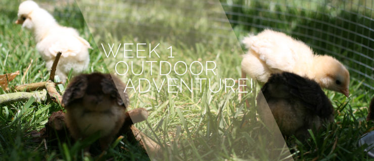 One Week: Outdoor Adventure!