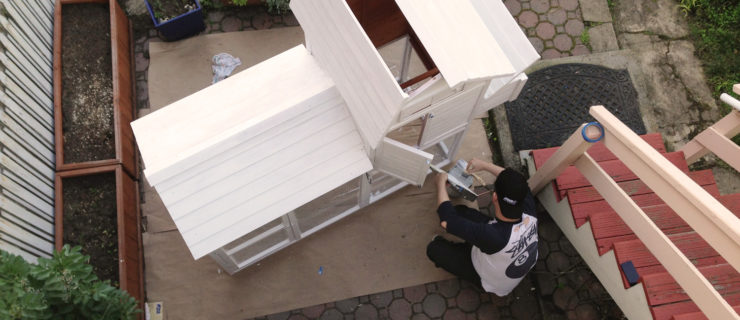 Painting the Palace